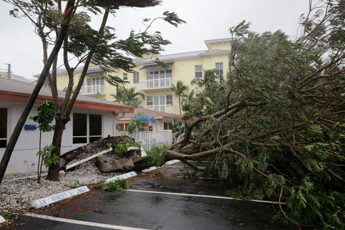 FORT LAUDERDALE, FL - SEPTEMBER 10: A tree is felled by winds produced by Hurricane Irma September 10, 2017 in Fort Lauderdale, Florida. The category 4 hurricane made landfall in the United States in the Florida Keys at 9:10 a.m. after raking across the north coast of Cuba. (Photo by Chip Somodevilla/Getty Images)