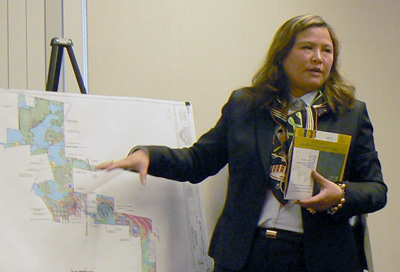 Sherry Li giving a presentation on the proposed China City of America-turned-Thompson Education Center in May 2013. (MidHudsonNews.com.)