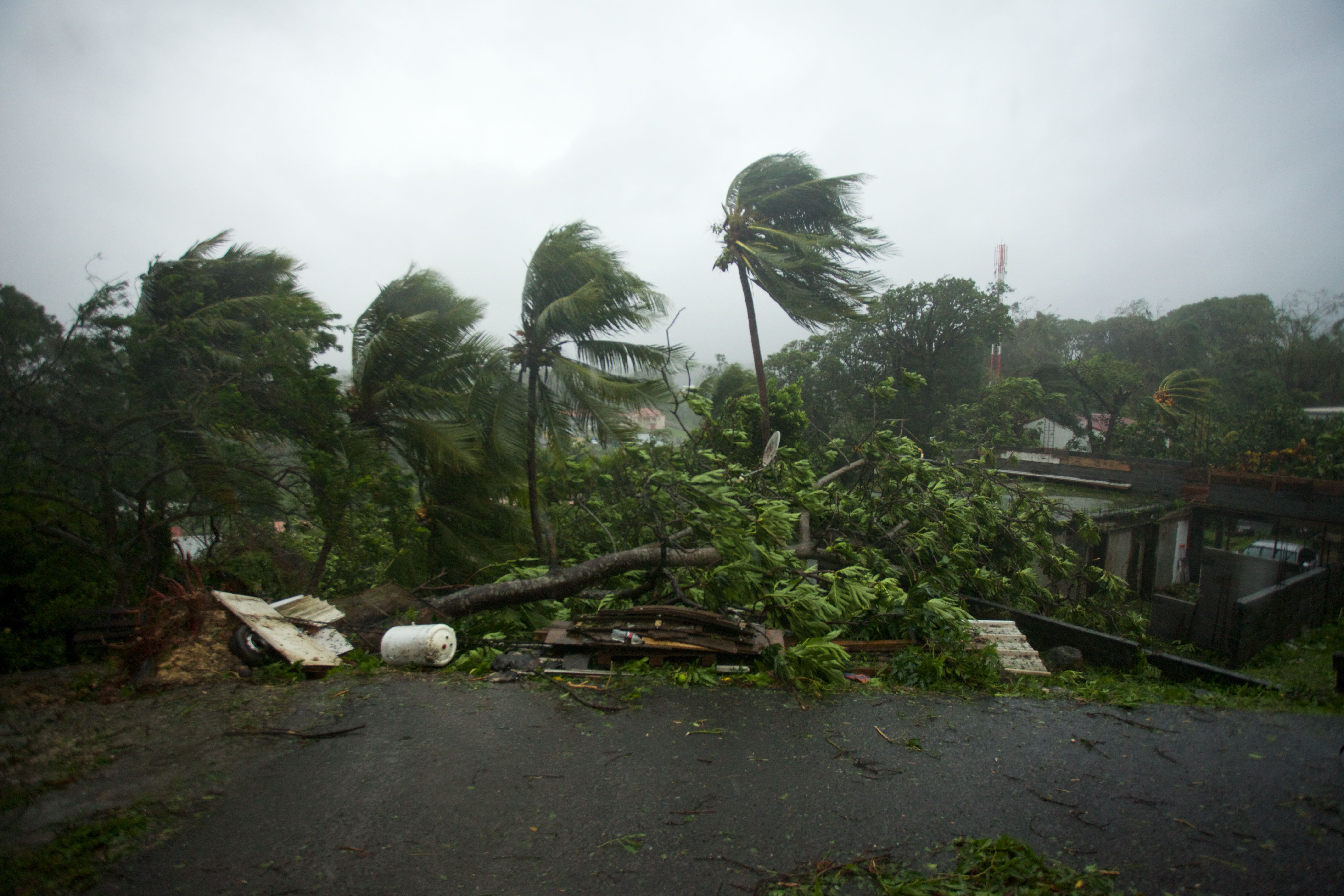 Martinique Escapes Brunt of Hurricane Maria, Guadeloupe Takes Lashing