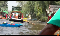 Video: Tourist Captures Mexican Earthquake on Camera From Tourist Boat