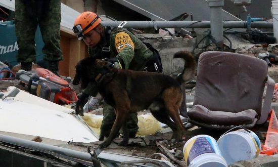 Latest Mexico Quake Spreads Alarm, Some Rescue Efforts Suspended
