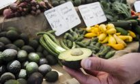 Social Media Users Blast Report America Would Run Out of Avocados If Trump Shuts Mexican Border