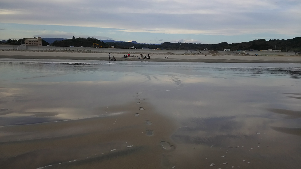 A file photo of beaches contaminated from the Fukushima Dai-ichi Nuclear Power Plant disaster in 2011. (Souichiro Teriyaki/Kanazawa University)