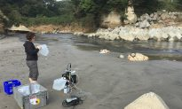 Scientists Discover New, Unexpected Way Fukushima Is Polluting the Ocean