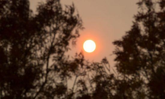 Ophelia Surprises Brits With 'Hurricane Sun'