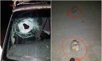 Michigan Driver Killed by Rock Thrown From Highway Overpass