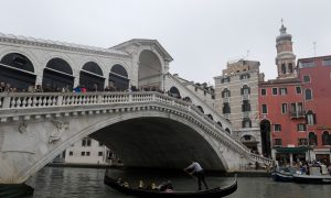 Local Wins Venice Marathon After Favorite Runners Take Wrong Turn