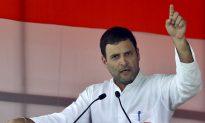 India's Gandhi Scion Seeks Revival in PM Modi's Backyard