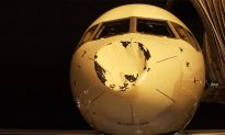 Bird Crashes Into NBA's Oklahoma Thunder Team Jet