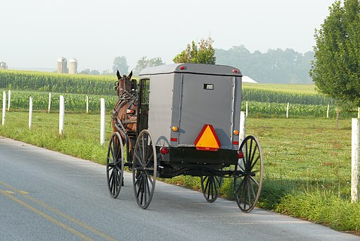 File photo of an Amish buggy in Michigan. (Ad Meskens/Wikimedia Commons [CC BY-SA 3.0 (creativecommons.org/licenses/by-sa/3.0) or GFDL (http://www.gnu.org/copyleft/fdl.html)])