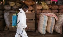 Plague Outbreak in Madagascar 'Worst for 50 Years'