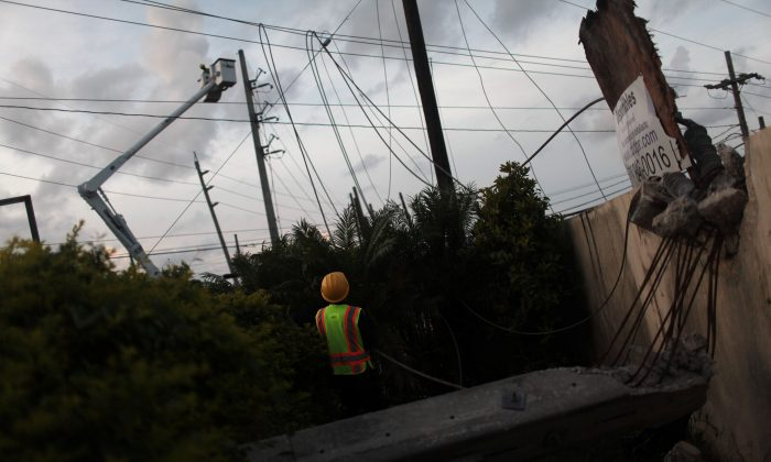 Workers of Puerto Rico's Electric Power Authority (PREPA) repair part of the electrical grid after Hurricane Maria hit the area in September, in Manati, Puerto Rico on Oct. 30, 2017. (REUTERS/Alvin Baez)