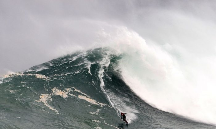 UK big wave surfer Andrew Cotton drops a wave in Praia do Norte in Nazare, Portugal, on Nov. 1, 2015. (Francisco Leong/AFP/Getty Images)