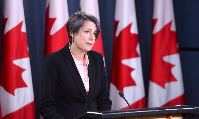 Debi Daviau, president of the Professional Institute of the Public Service of Canada, holds a press conference about the Phoenix pay system in Ottawa on Nov. 14, 2017. (The Canadian Press/Sean Kilpatrick)