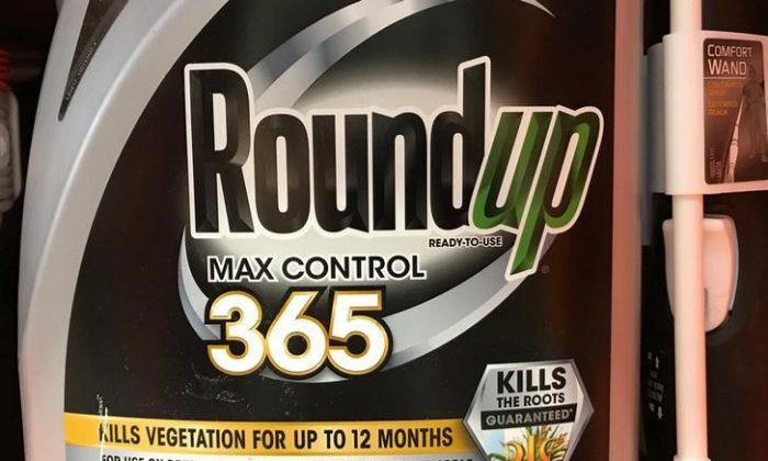 Monsanto Co's Roundup is shown for sale in Encinitas, California, U.S., June 26, 2017. (REUTERS/Mike Blake)