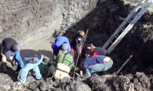 You won't believe what this farmer dug up while working on his farm