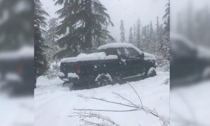 Missing elk hunter Joel Presler's pickup truck. (Skamania County Sheriff's Office)