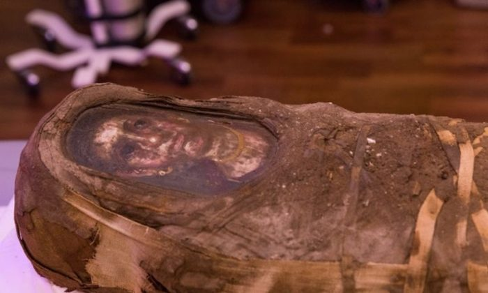 The Hibbard mummy. (Northwestern University)