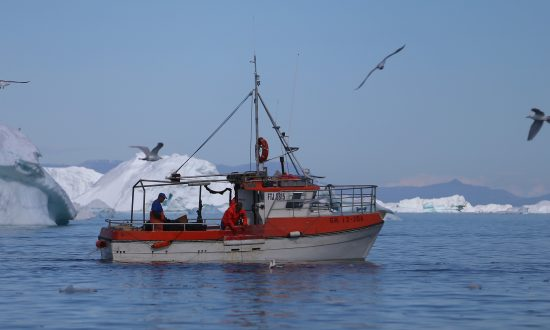 10 Nations Agree to Study Newly Opened Arctic Fishing Waters