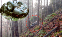 Porsche Stolen 27 Years Ago Found in Oregon Forest
