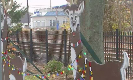 Police saw someone vandalized holiday decorations. But when they caught  culprit—they weren't ready