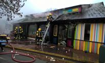 More Than 70 Firefighters Tackle Blaze at London Zoo