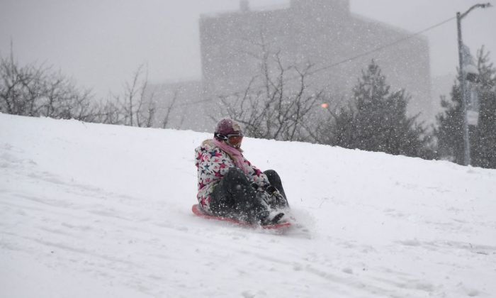 A person sleds down a hill on Jan. 4, 2018 in Brooklyn, New York. The US National Weather Service warned that a major winter storm would bring heavy snow and ice, from Florida in the southeast up to New England and the Northeast on Wednesday and Thursday. (Angela Weiss/AFP/Getty Images)