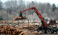 Canada Launches Global Trade Complaint Against US Over Use of Duties