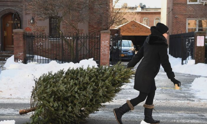 A woman drags a Christmas tree in Brooklyn, New York on Jan. 5, 2018. (Angela Weiss/AFP/Getty Images)