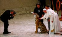Pope Treats Poor to Circus, Upsetting Animal Rights Activists