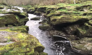 River in Yorkshire looks normal—but once you know what's underneath, you won't dare go near it