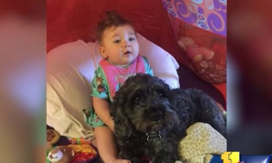 8-month-old and family dog trapped in burning home, what firefighters say will reduce you to tears