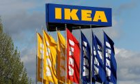 IKEA Praised After Allowing Stray Dogs to Sleep in Store During Winter