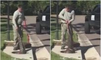 Trapper Pulls Alligator Out of Florida Sewer