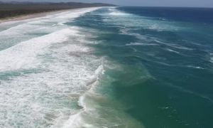 Drone flies over the ocean searching for this one thing. When it finds it—does something unthinkable