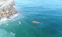 Two Swimmers' Lucky Rescue From Rip Current in Australia