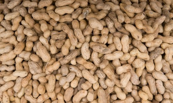 Peanut Allergy Study Reveals Possible Treatment