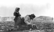 Dutch Parliament Votes on Motion Regarding 1915 Armenian Massacre