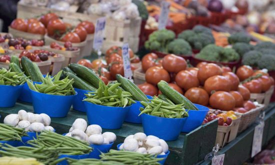 Nutrition Experts Optimistic About New Canada Food Guide to Be Released This Spring