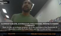 Bernie Sanders Campaign May Face Criminal Investigation Over Australia Labor Party Collusion