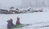 Making the Most out of Snow: Towing a Kids' Sleigh with Tractor