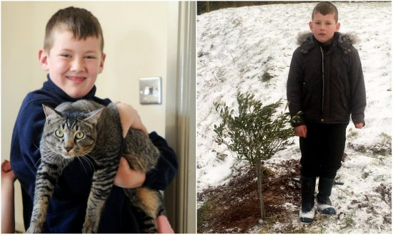 Family Grief Stricken to Bury Beloved Cat—Two Days Later They Get Shocking Surprise