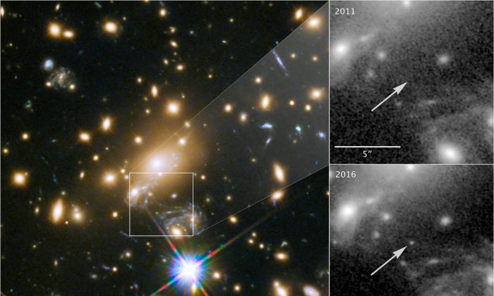 NASA's Hubble Space Telescope image of a blue supergiant star the Icarus, the farthest individual star ever seen, is shown in this image released April 2, 2018. (Courtesy NASA, ESA, and P. Kelly/University of Minnesota/Handout via Reuters)