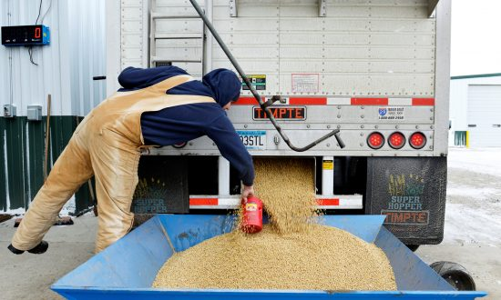 China Retaliates, Slaps Duties on US Soybeans, Planes
