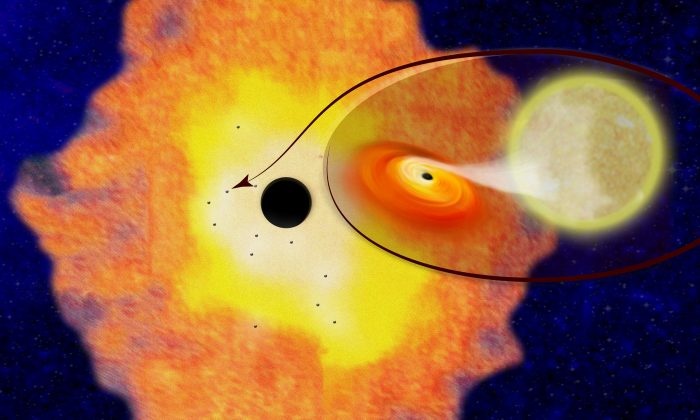 Twelve black hole low-mass binaries orbiting Sagittarius A* at the center of the Milky Way galaxy, appear in this illustration provided by Columbia University, April 5, 2018. Their existence suggests there are likely about 10,000 black holes within just three light years of the Galactic Center. (Columbia University/Handout via Reuters)