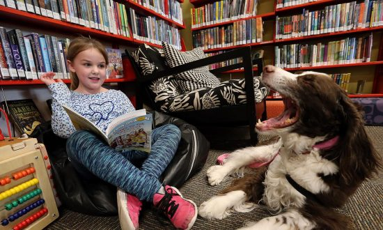 Librarian brings dog to library, what the kids end up doing—they didn't think it would be like this