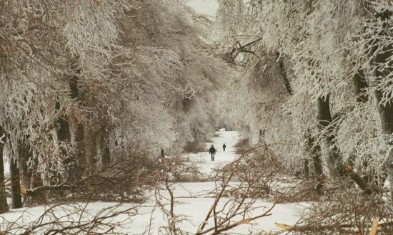 April's Ice and Rainstorm Wreaks Havoc in Ontario and Quebec