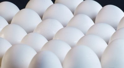 200 Million Eggs Recalled Over Salmonella Fears