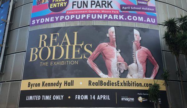 Real Bodies Exhibition Sydney 2018