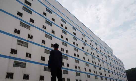 China's Multi-Story Hog Hotels Elevate Industrial Farms to New Level